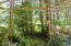 3023 Yasek Loop, Toledo, OR 97391 - timber