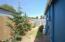 2208 NW Oceanview Dr, Newport, OR 97365 - North walkway