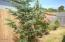 2208 NW Oceanview Dr, Newport, OR 97365 - Landscaping