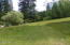 517,449 Thornton Creek Rd, Toledo, OR 97391 - Pasture