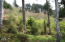 LOT 13 Gimlet Lane, Yachats, OR 97498 - DSC06430-1