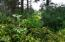 T/L 3201 NW Rhododendron, Gleneden Beach, OR 97388 - Lot Picture