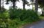T/L 3201 NW Rhododendron, Gleneden Beach, OR 97388 - Lot from Street