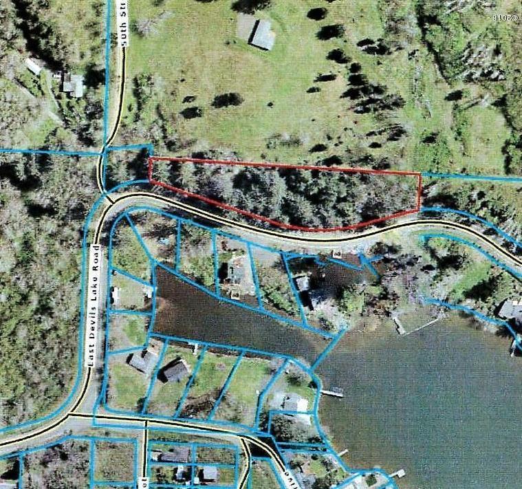 4763 NE East Devils Lake Rd, Otis, OR 97368 - Aerial of 1.6 acre home site