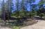 5856 NW Fox Creek Way, Seal Rock, OR 97376 - Yard