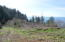 TL 214 South Beach Road, Neskowin, OR 97149 - Lot