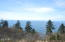 TL 214 South Beach Road, Neskowin, OR 97149 - View