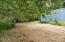 1163 Yasek Loop, Toledo, OR 97391 - Creek wanders by the trees