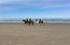 5765 SW Barnacle Ct, South Beach, OR 97366 - Miles of sandy beach