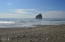 LOT 71 Dory Pointe, Pacific City, OR 97135 - Beach