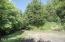 255 N Hays Rd, Waldport, OR 97394 - Backyard (1280x850)