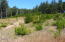 TL 1 SE Wakeetum St, Waldport, OR 97394 - Developed lot