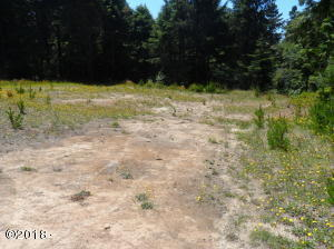 TL 5 SE Wakeetum St, Waldport, OR 97394 - Developed lot