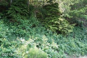 LOTS 2 & 3 Sea Crest Drive, Otter Rock, OR 97369 - Lot View 1.2