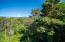 4600 SW Coast Ave, Lincoln City, OR 97367 - Park views from #2