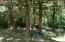 237 E Buck Creek Rd, Tidewater, OR 97390 - woods near Cougar Creek