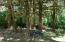 237 E Buck Creek Rd, Tidewater, OR 97390 - Nice trees