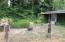 1975 Deer Rd, Tillamook, OR 97141 - Front Yard