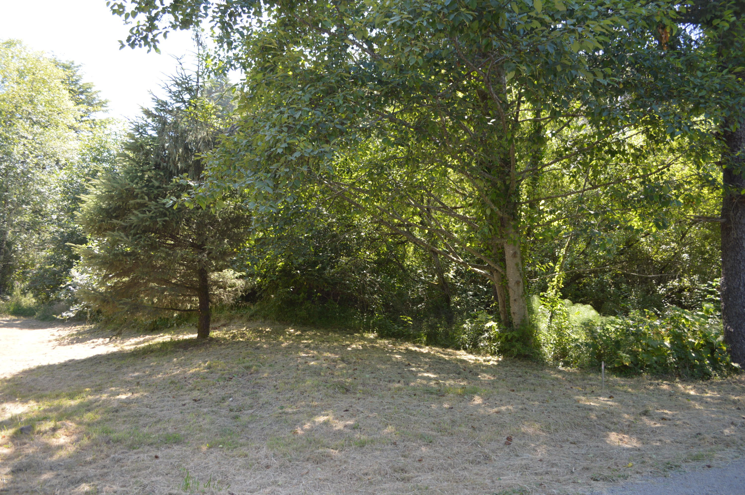 TL 228 Nescove Drive, Neskowin, OR 97149 - Lot from Street