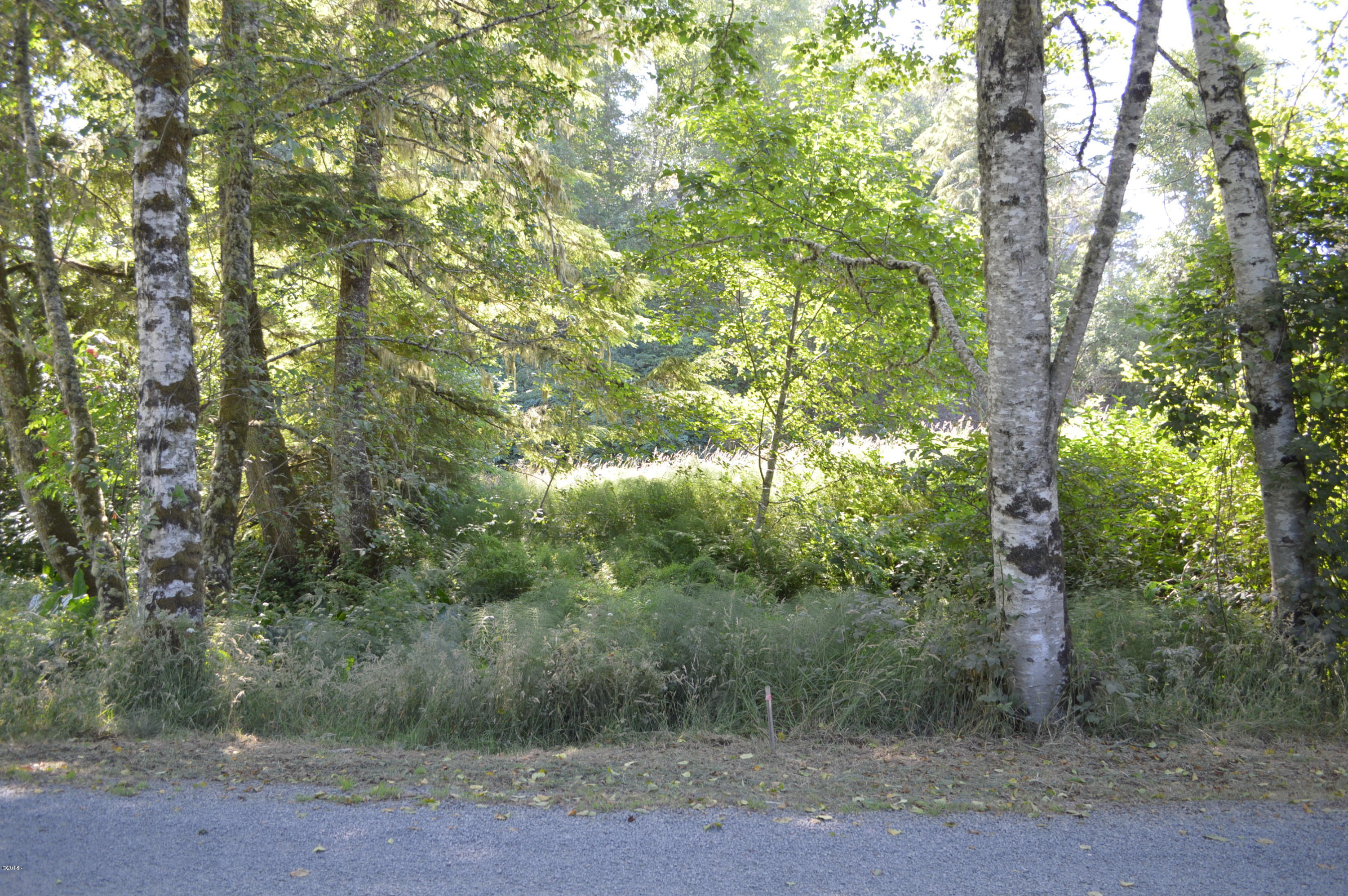 TL 229 Knoll Terrace, Neskowin, OR 97149 - Lot from Street