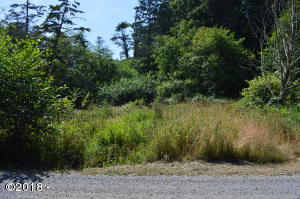 TL 225 South Beach Road, Neskowin, OR 97149 - Lot from Street