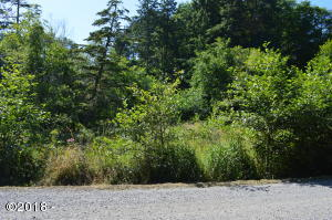 TL 226 South Beach Road, Neskowin, OR 97149 - Lot from Street