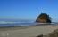 TL 213 Nescove Drive, Neskowin, OR 97149 - Beach