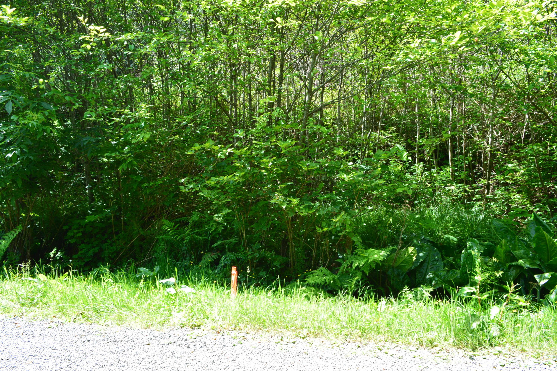 TL 213 Nescove Drive, Neskowin, OR 97149 - Hiatt (5)