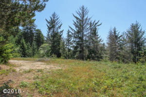 255 NE Hillside Dr, Waldport, OR 97394 - Looking South