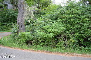 TL 222 Knoll Terrace, Neskowin, OR 97149 - Lot from Street