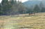 What this property is all about-Herds of elk frequent property