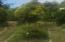1754 Highway 101, Yachats, OR 97498 - garden