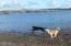1002 NW Bayshore Dr, Waldport, OR 97394 - Fun at the Bay!!!