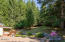 2536 Nashville Rd, Eddyville, OR 97343 - Backyard