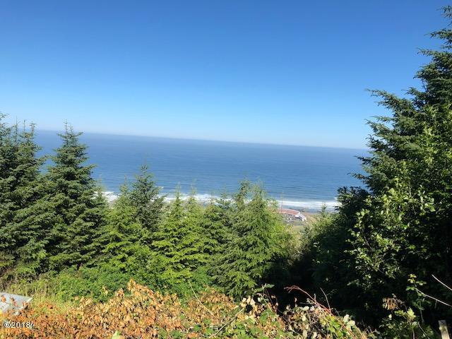 TL#4700 Horizon Hill, Yachats, OR 97498 - IMG_1101