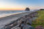 49664 Surf Road, Neskowin, OR 97149 - Proposal Rock