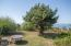 44550 Sahhali Dr, Neskowin, OR 97149 - Backyard - View 4 (1280x850)