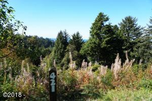 421 Surf View Drive, Gleneden Beach, OR 97388 - Lot View