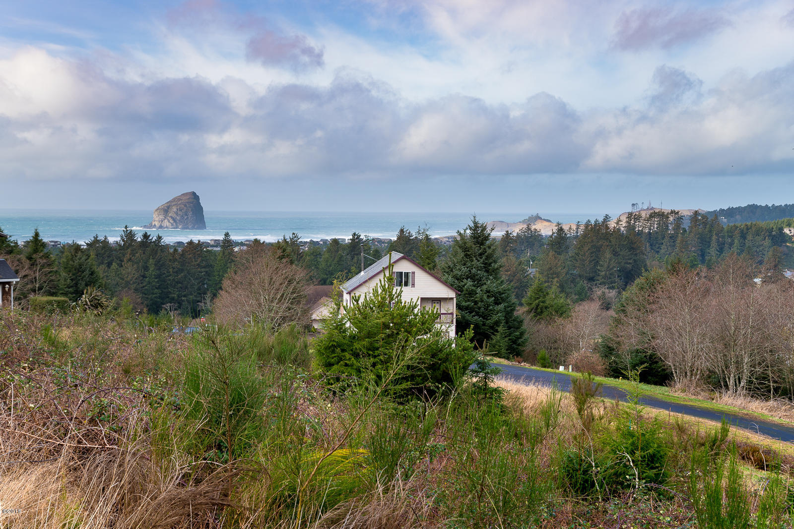 TL 1403 Dana Lane Court, Pacific City, OR 97135 - Views!