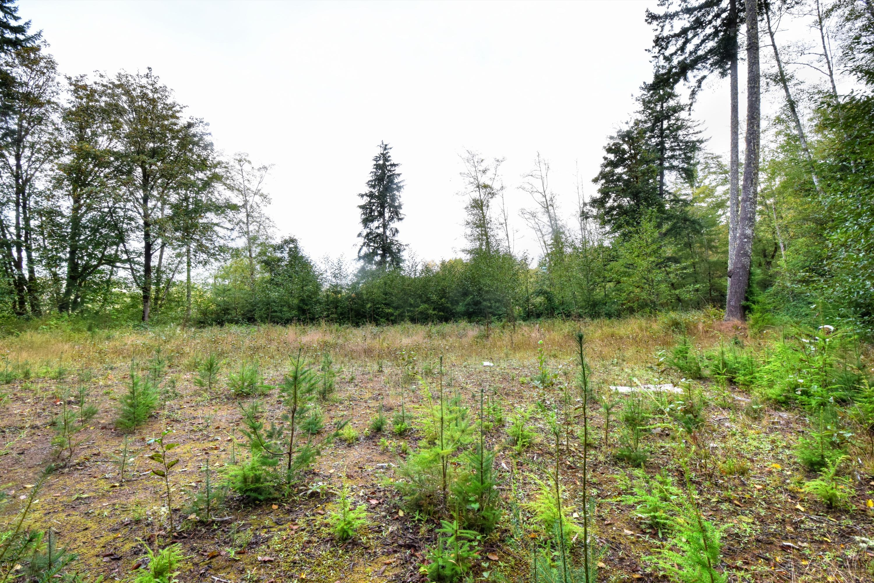 2025 SE Alder Ln Dr, Toledo, OR 97391 - Building Site