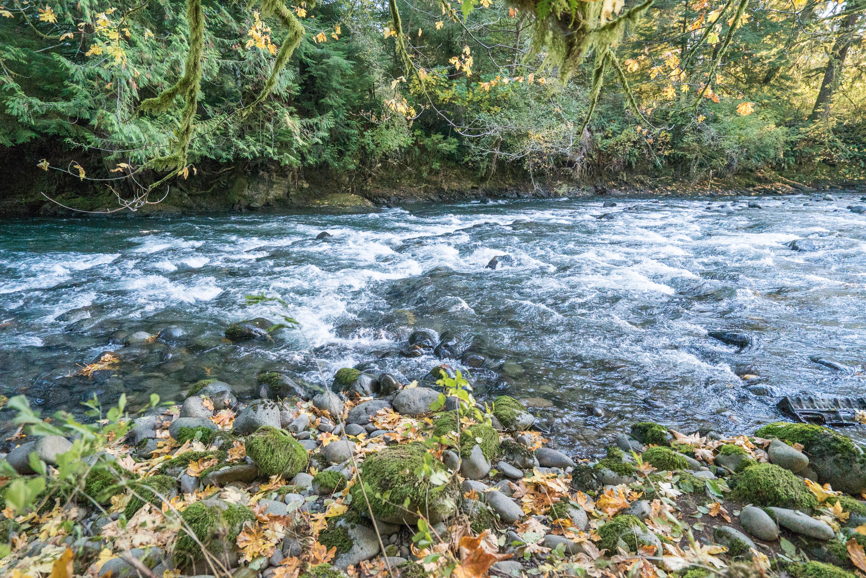 NONE NORTH Highway 18 / Salmon River, Otis, OR 97368 - River Wilson Lot Listing