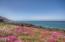 1630 Walking Wood, Depoe Bay, OR 97341 - Ocean front