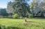 2957 NE West Devils Lake Rd, Lincoln City, OR 97367 - HUGE Backyard