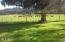 2644 Moonshine Park Rd, Logsden, OR 97356 - 20170506_171345
