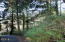 LOT 5600 NE Indian Shores Dr., Lincoln City, OR 97367 - Lot