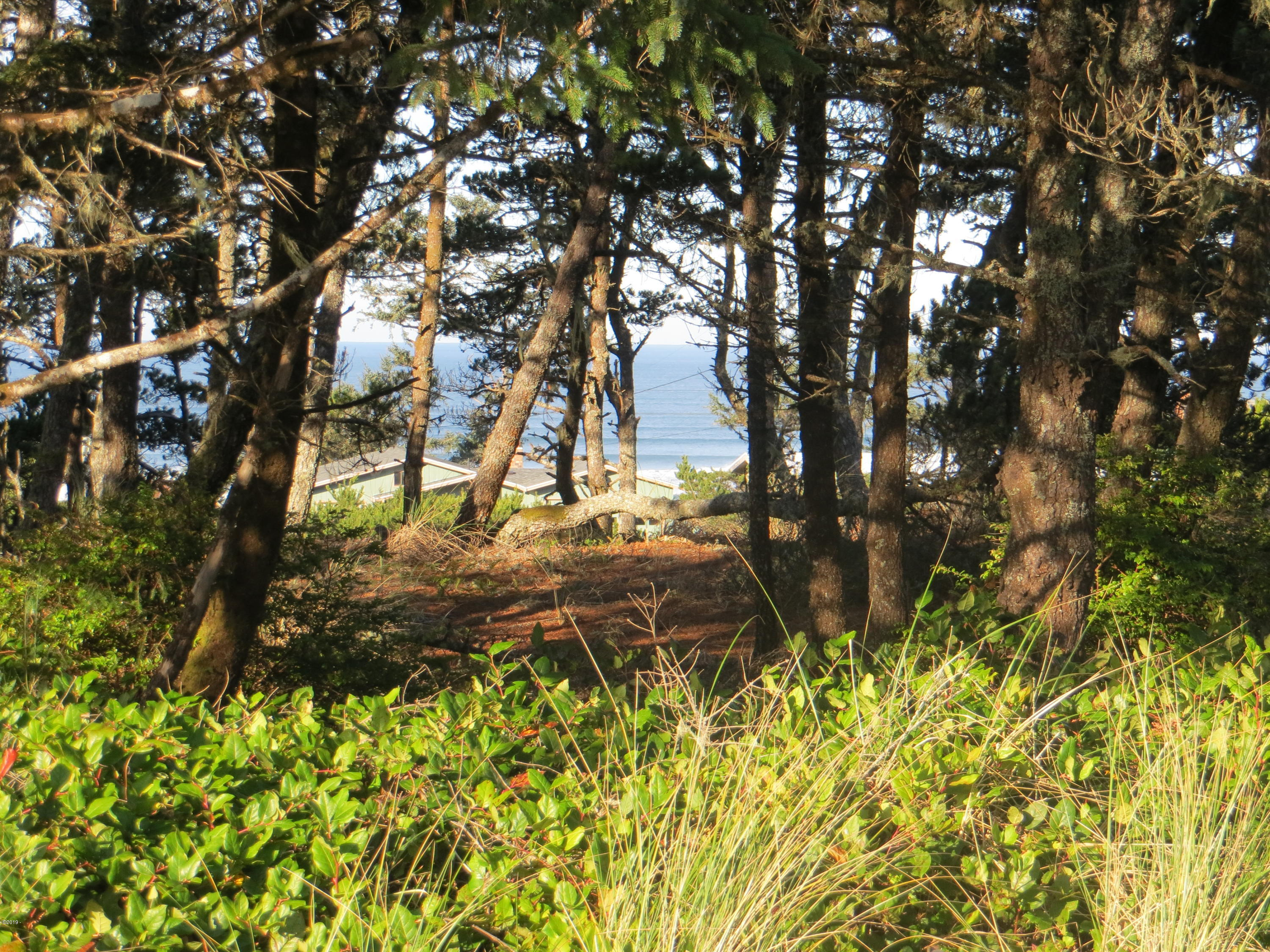 1810 NW Oceanview, Waldport, OR 97394 - Street View of Lot