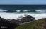 1520 Walking Wood, Depoe Bay, OR 97341 - Ocean View from Path