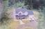 8315 NE Ridgecrest Ct, Otis, OR 97368 - Aerial View