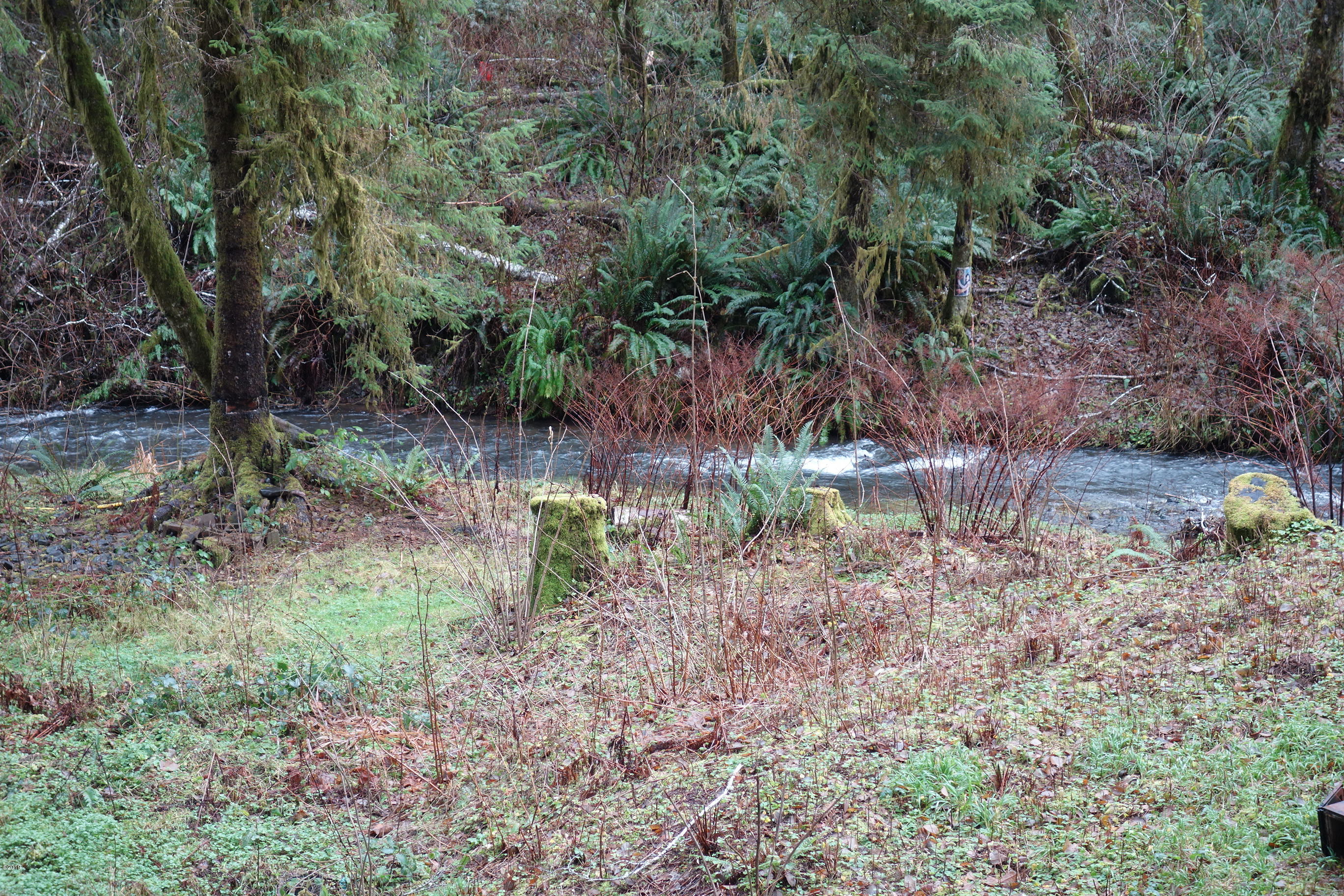 LOT 5 N. Doris Ln, Otis, OR 97368 - Creek Frontage