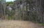 TL7200 NW Pacific Coast Hwy, Seal Rock, OR 97376 - Nice Lot